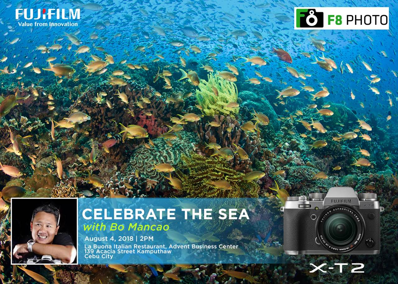 Celebrate The Sea: A Talk On Underwater Photography and Ocean Conservation by Bo Mancao
